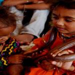 भारत का सर्पलोक जहाँ जहरीले सांप कोबरा संग रहते हैं लोग